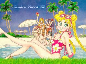 Sailor Moon Mini_956956wallpapercmhp06