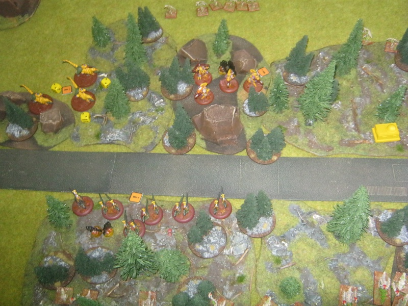 Assaut sur Zebra (campagne narrative) - Page 2 117505IMG0408