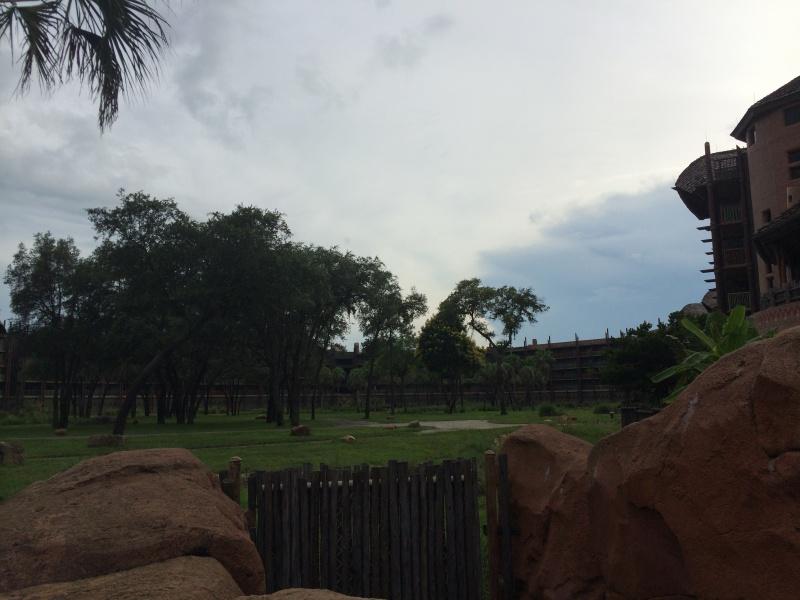 Walt Disney World + Universal Studios + Sea World + Busch Gardens Summer 2014 - Page 4 120904IMG2818