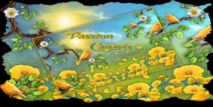 PASSION CANARIS