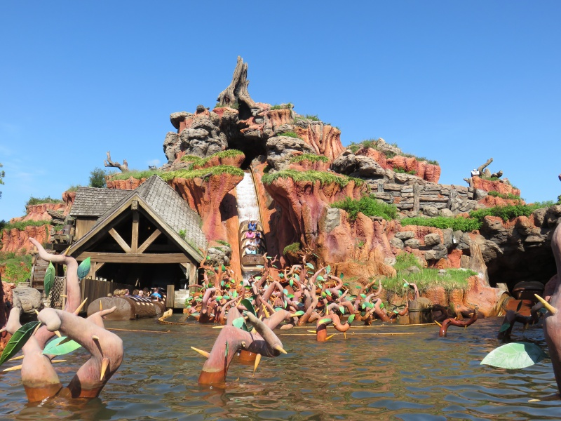 Walt Disney World + Universal Studios + Sea World + Busch Gardens Summer 2014 - Page 4 129961IMG0797