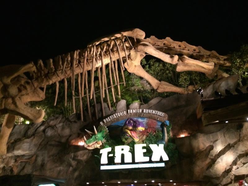 Walt Disney World + Universal Studios + Sea World + Busch Gardens Summer 2014 - Page 4 130094IMG2833