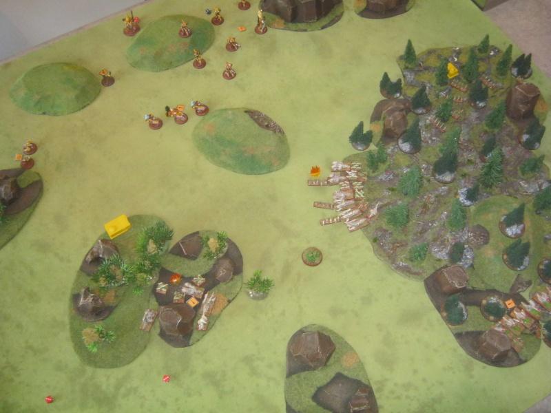Assaut sur Zebra (campagne narrative) - Page 2 133507IMG0222