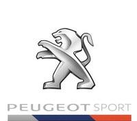 RCZ RACING CUP - Nicolas Milan et David Pouget dos à dos au Mans 14172411140264