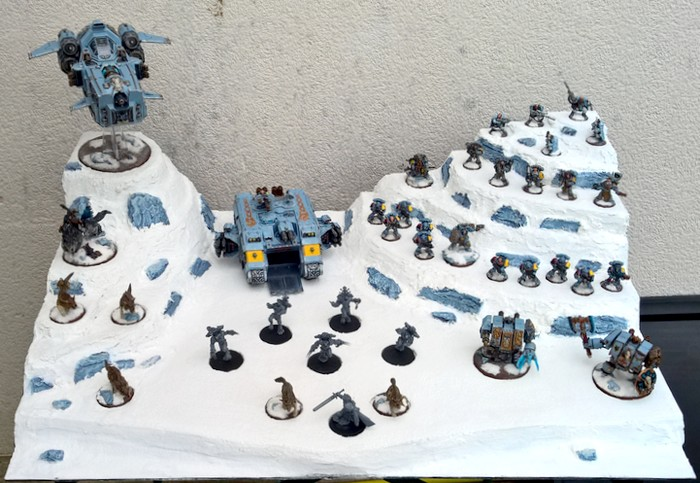 Space Wolves - Typhon... un peu particulier  - Page 2 141863SWDisplay7
