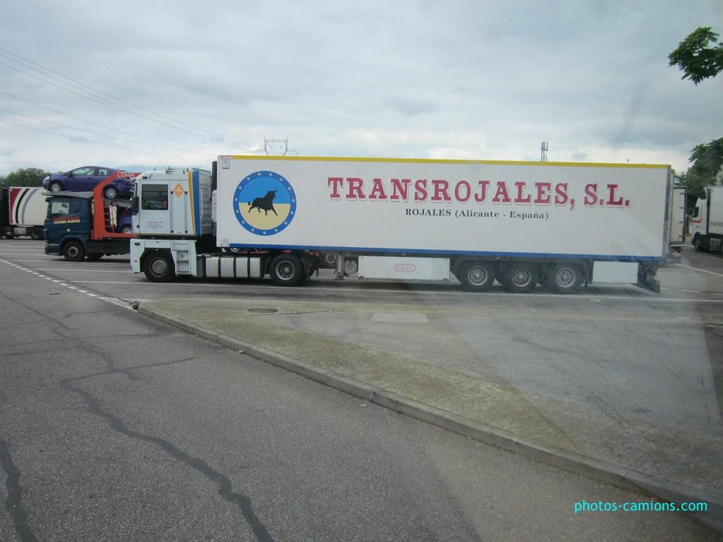 Transrojales (Rojales - Alicante) 141963IMG0645Copier