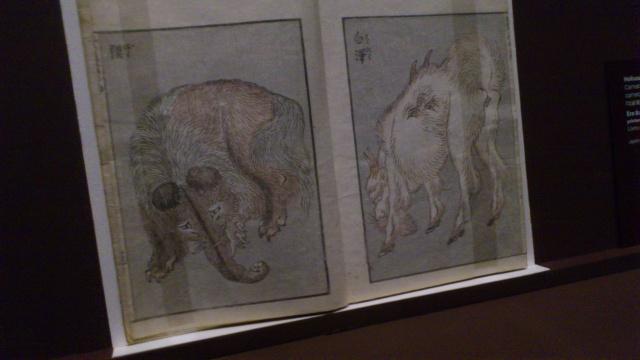[Expo Report] Exposition Hokusai 148786DSC0077