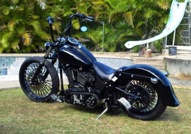PHOTOS de Beaux Softails, de moches & de Bizarres.. - Page 5 153263image