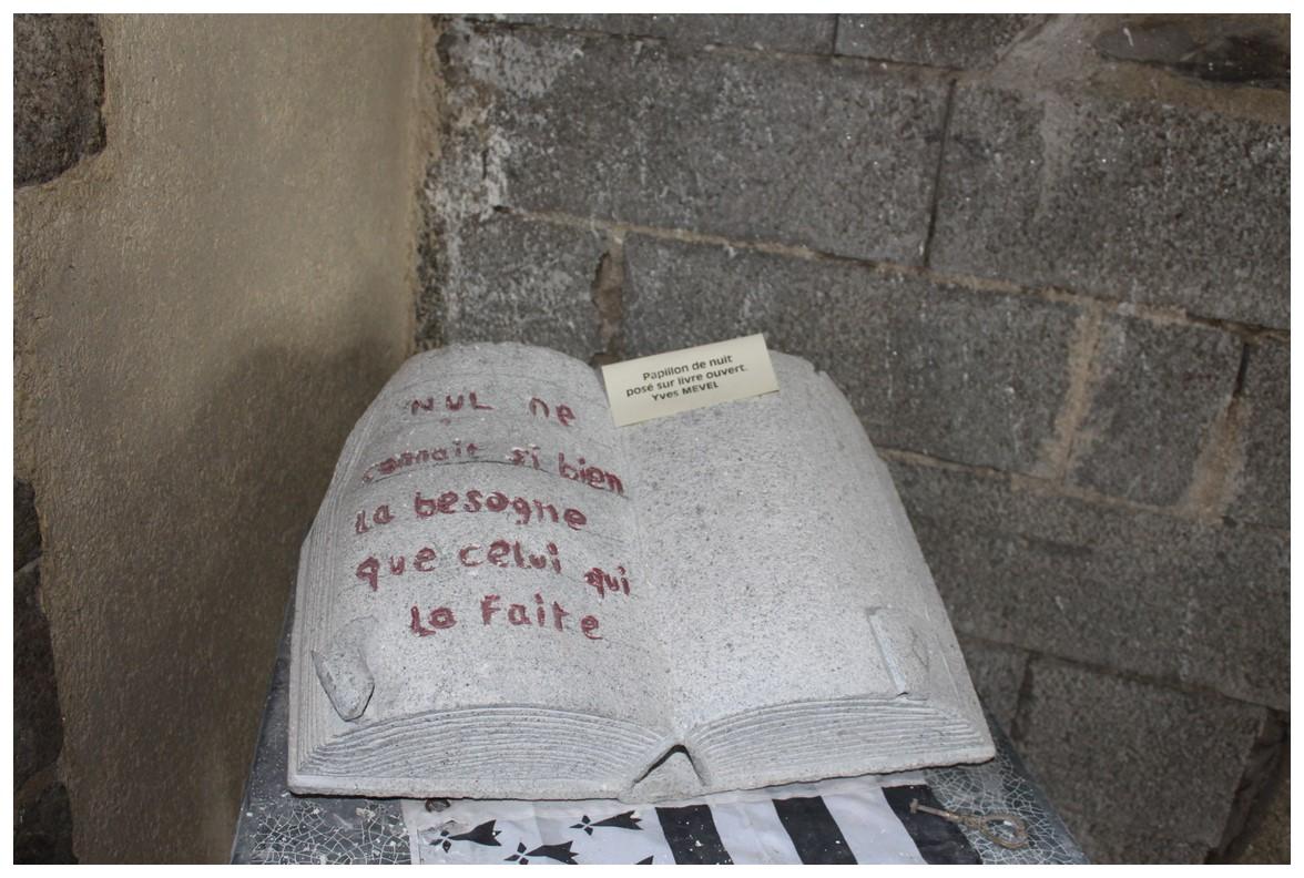 LA SORTIE des JONQUILLES du CALANDRE & TORPEDO 2016 154271IMG5956Copier