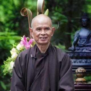 Le bien, le mal et le corps du Dharma 155031thay4HWVC