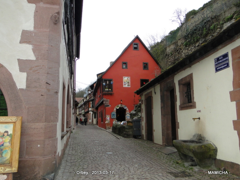 Escapade en Alsace : Kaysersberg - 68 - 155106Savaneaventure084