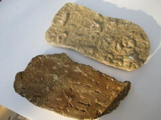 Encore quelques photos de pierres 155118IMG0082