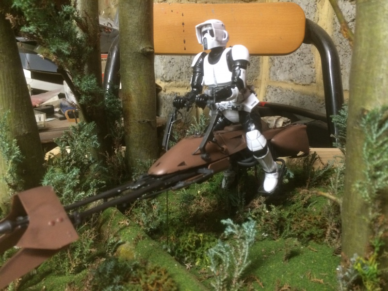 SCOUT TROOPER et SPEEDER BIKE 163002IMG0356