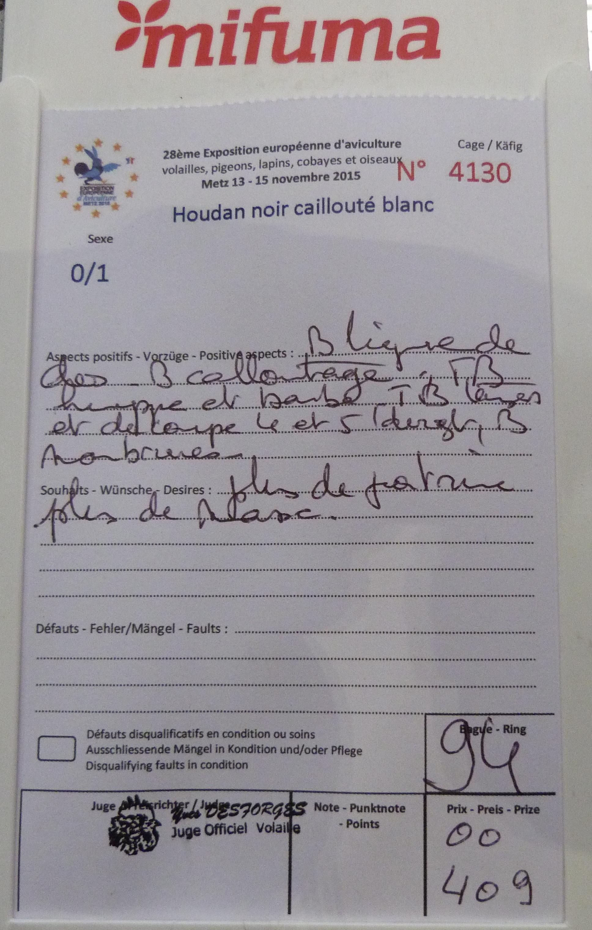 Expo de Metz, mes coups de cœur en GR 163489P1170289