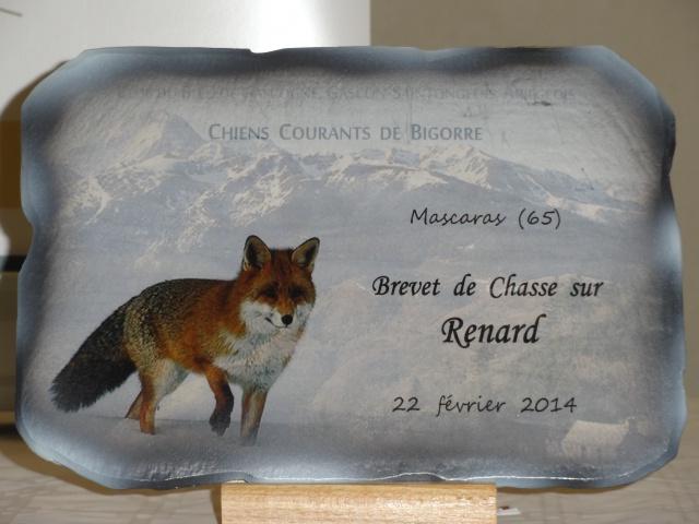 Brevet sur renard (F) 2014. 169998Brevet2202201412