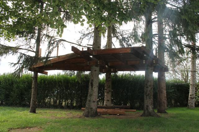 Arbres porteurs pour plateforme dans les arbres - Page 2 174112IMG3088