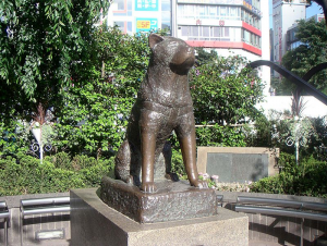 [Culture] Hachiko, chien fidèle 178203800pxhachiko2005052