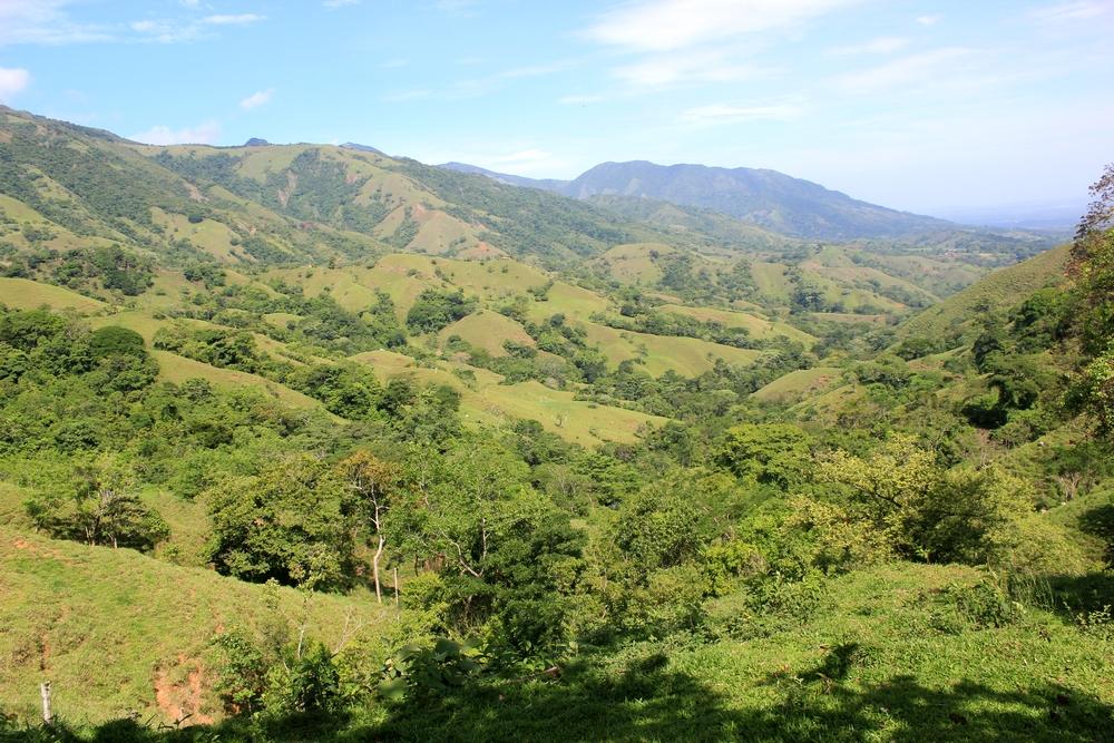 15 jours dans la jungle du Costa Rica 178714costa2r