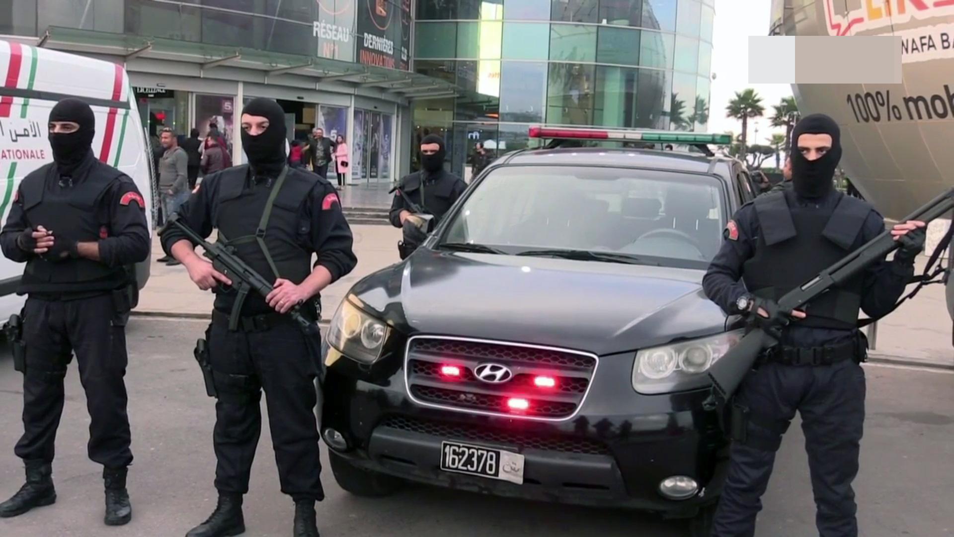 Moroccan Special Forces/Forces spéciales marocaines  :Videos et Photos : BCIJ, Gendarmerie Royale ,  - Page 9 1806739423