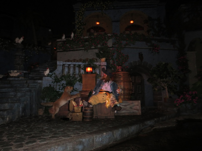 Walt Disney World + Universal Studios + Sea World + Busch Gardens Summer 2014 192746IMG0214