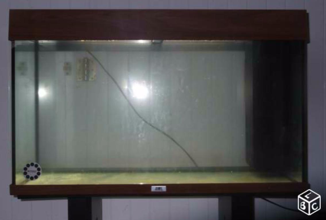[URGENT] Avis aquarium d'occasion 195462451