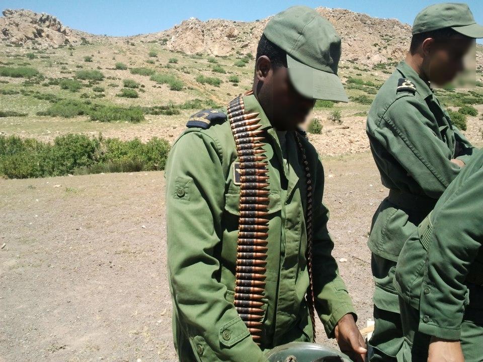 Les FAR ... école pour les armées africaines ! - Page 2 2193164867145751476891855861760218080n