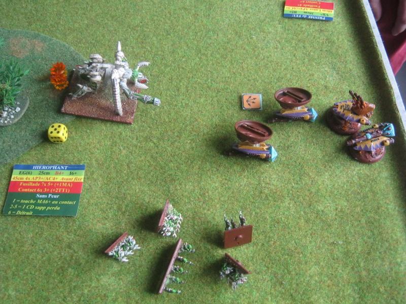 Assaut sur Zebra (campagne narrative) - Page 2 219433IMG0396