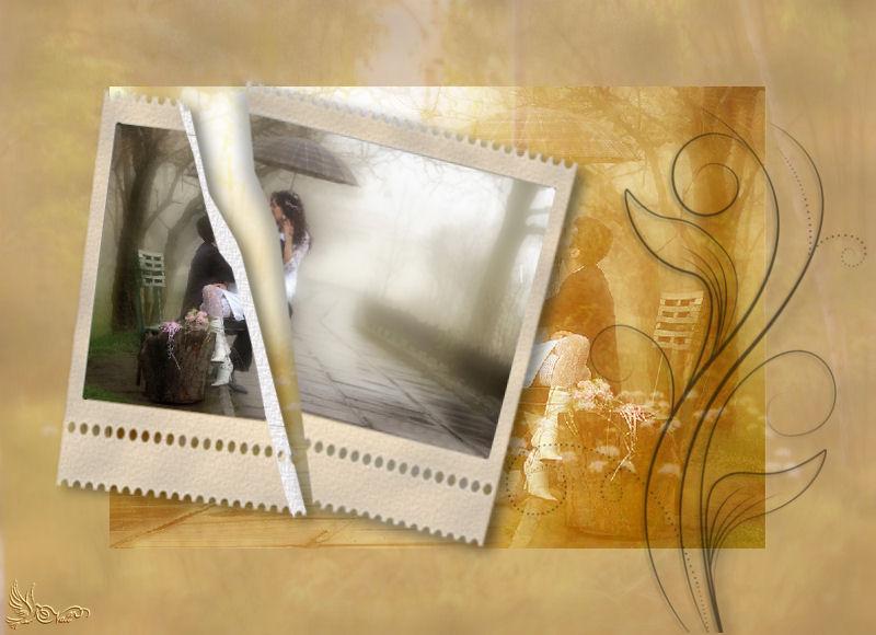 13-Cours Psp-Image déchirée 220614COURSDEGINETTE13NALL