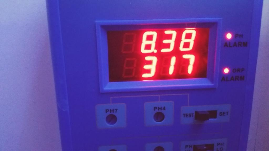 Mon cube de 125 litres autrefois berlinois dédié Montiporas! 22700220151213090526