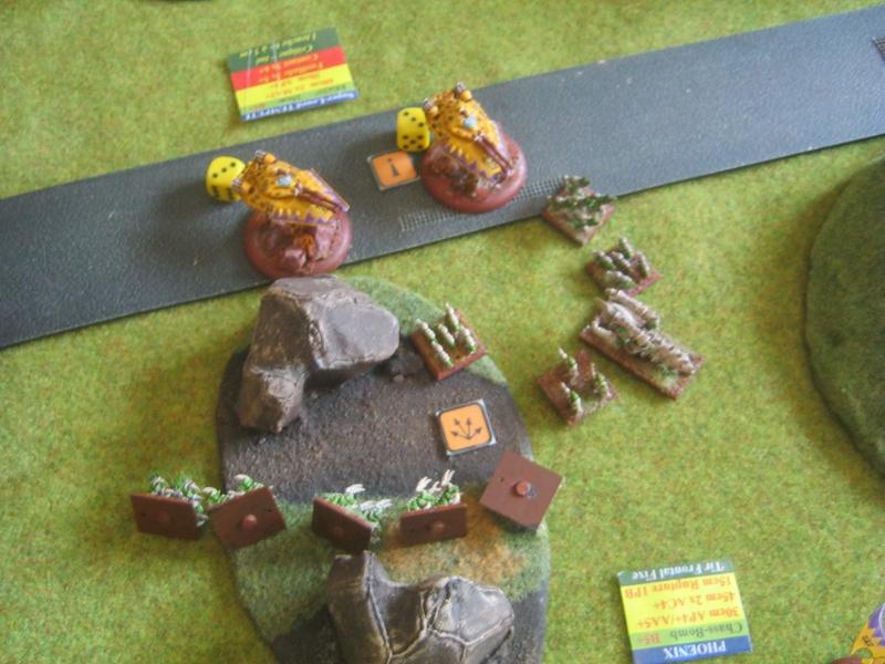 Assaut sur Zebra (campagne narrative) - Page 2 231661IMG0408