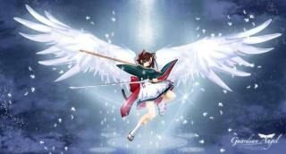 Ma collection d'animés/mangas ^^ 232285102548setsuna19super