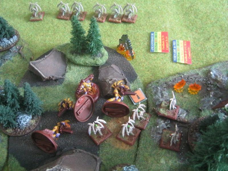 Assaut sur Zebra (campagne narrative) - Page 2 235573IMG0391