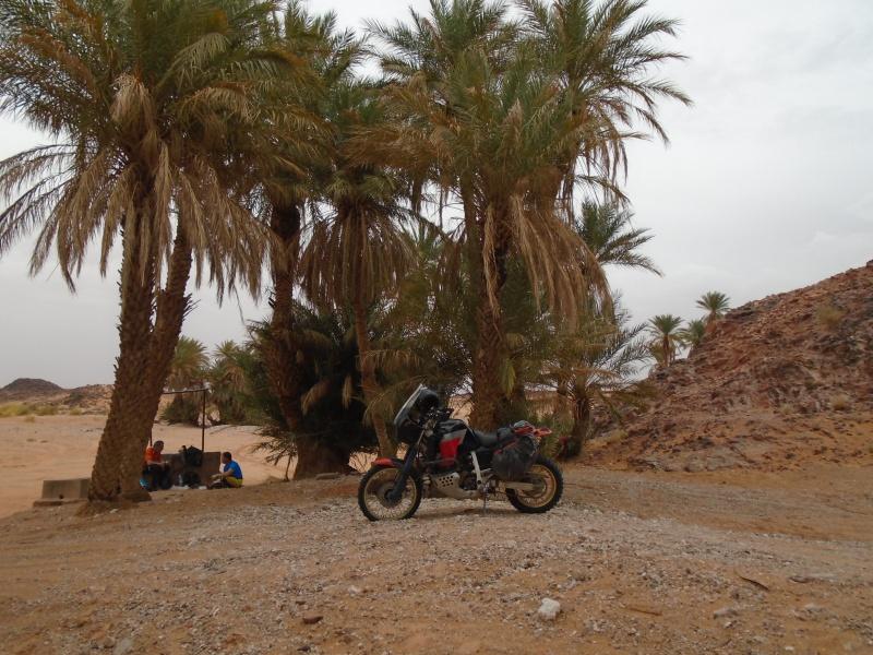 Maroc 2016 de Franck, Speedy et Maxou 237035DSC00491