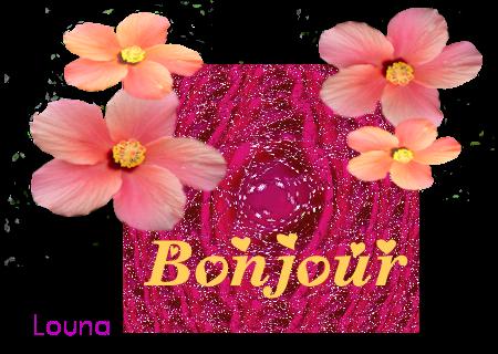 Gifs bonjour  239284BONJOURFAITCE23AOUT2012