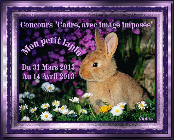 Chez Violine - Forum de Loisirs et Créations Graphiques 240810BanLapin310313