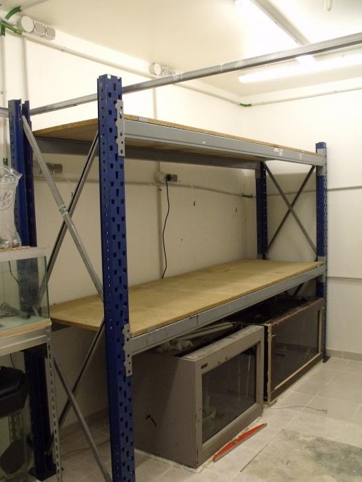 aménagement de ma nouvelle fishroom 248946DSCF4951