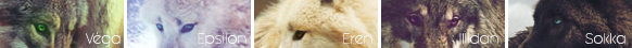 [EVENT] 3- Assaut Revers Gauche 249809friseperso