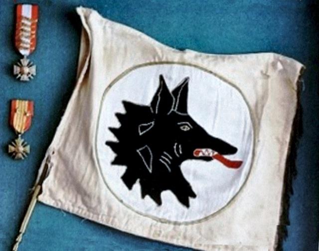 [ Aéronavale divers ] [ 1945-1950 L'histoire des grands oiseaux blancs à tête de loup noir en Indochine 253045LOUPe1Copie