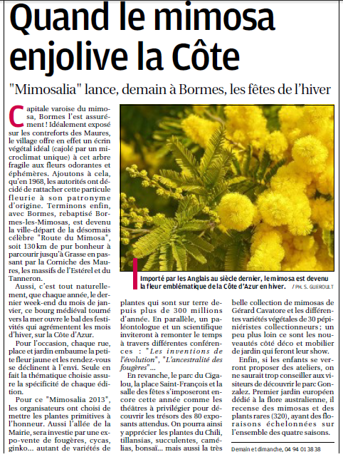 LA VEGETATION MEDITERRANEENNE - Page 7 2605251642