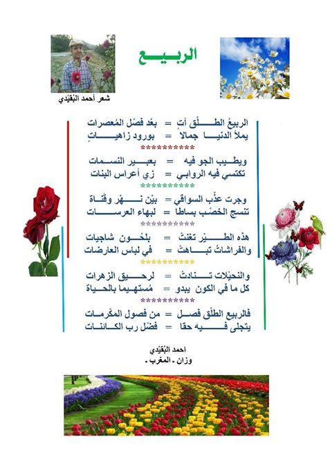 الربيع - أحمد البقيدي 272239126717798800386554573375564898476283308274o