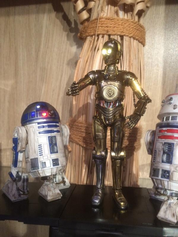 R2-D2 et C3-PO (et R5-D4) 272878IMG0249