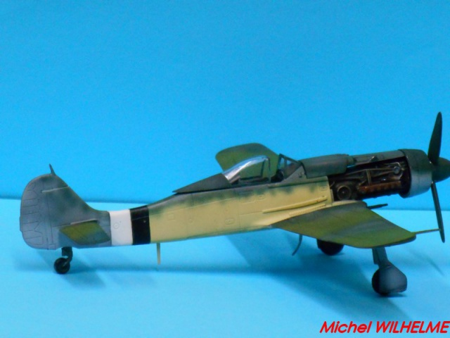 FOCKE WULF 190 D9  kit force of valor 1/72 273568DSCN7528Copier