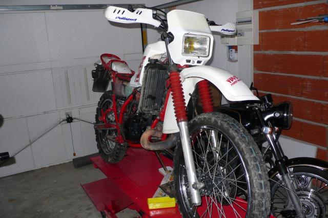 Grosse révision de ma moto des champs 278768P1090015