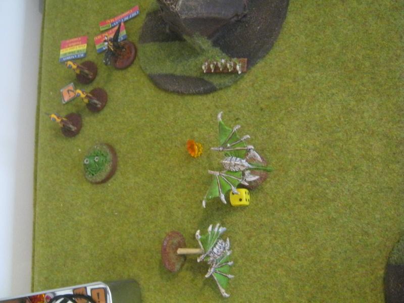 Assaut sur Zebra (campagne narrative) - Page 2 279042IMG0423