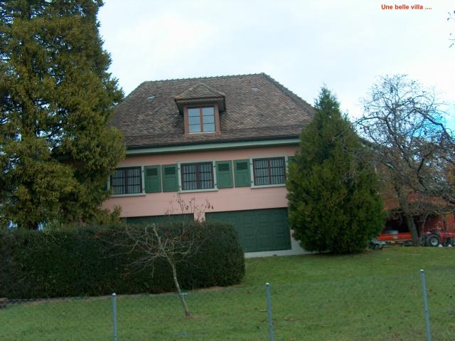 Mitrailleuse suisse Mod. 1911 281163HPIM4673
