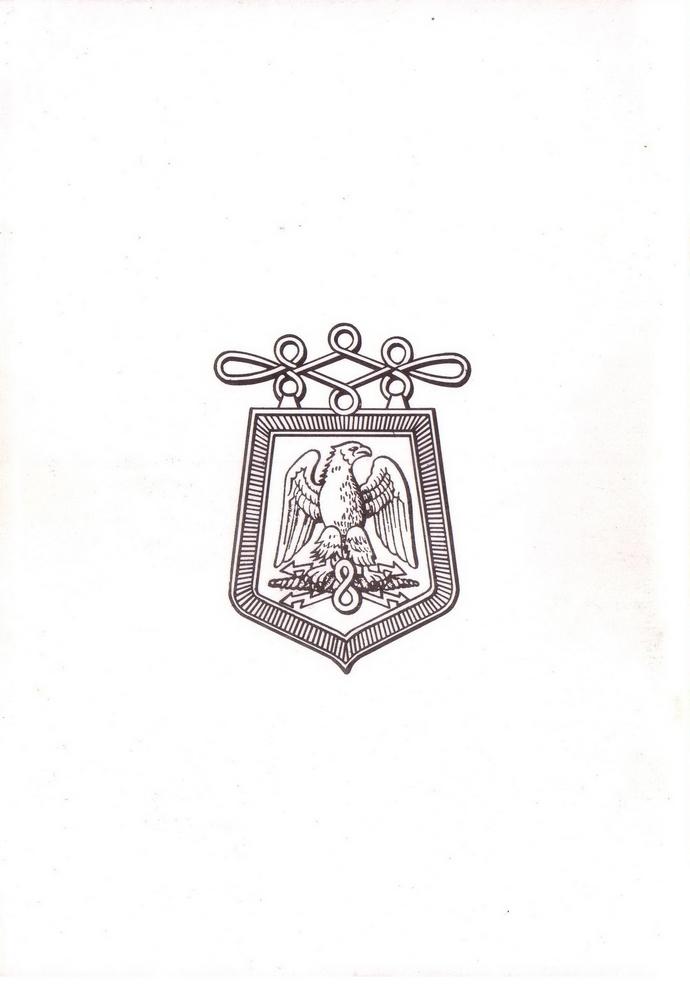 L'épopée Napoléonienne du 8 ème Régiment de Hussards  - Page 2 282157Historique8RHNC
