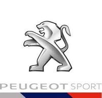 Vélocité non récompensée pour les PEUGEOT 208 WRX à Hockenheim 295299peugeotsport