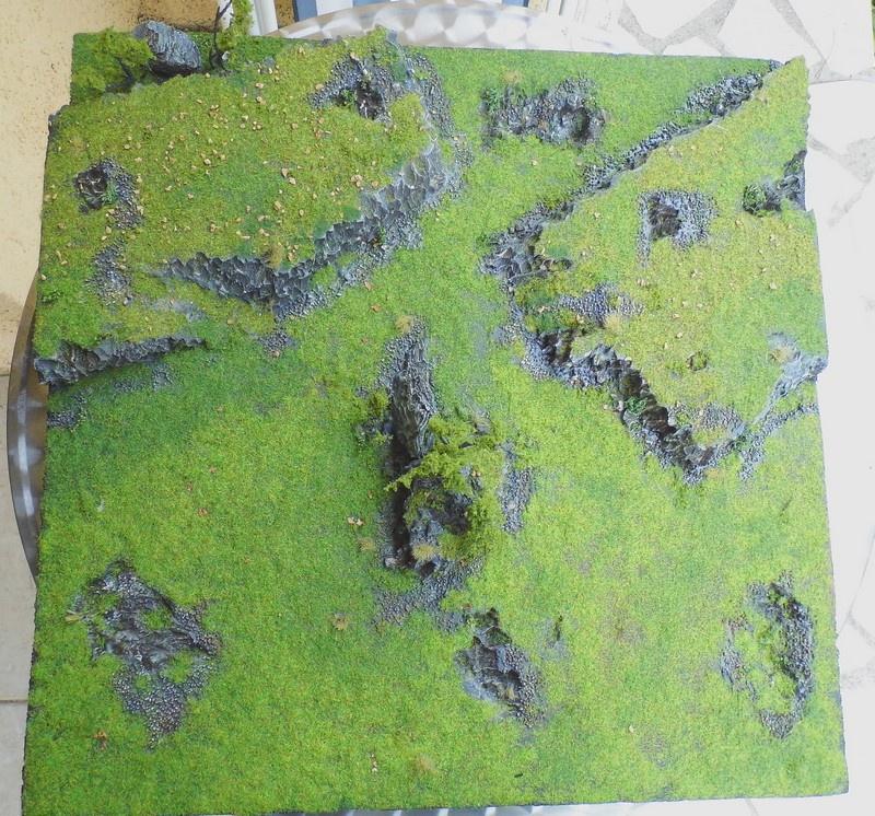 Plateau de présentation de régiments  300953DSCI1292