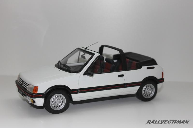 collection de rallyegtiman 301022IMG1507