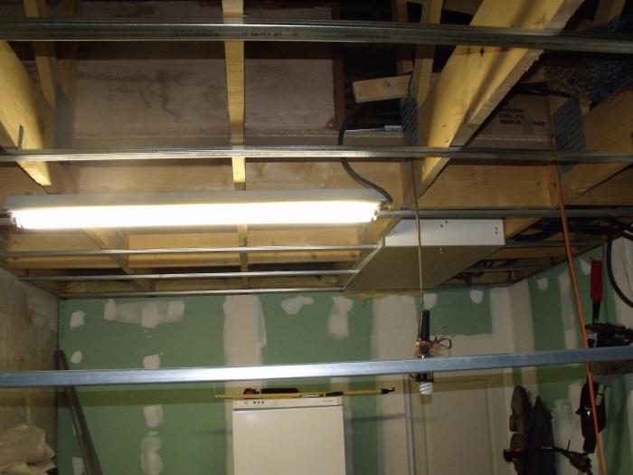 aménagement de ma nouvelle fishroom 306031DSCF4431